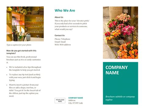 Brochure Template Word Brochures Office