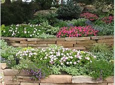 Landscape Plant Materials for Colorado Springs Personal