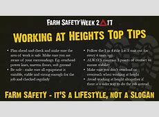 THE RISE AND FALLS OF FARM SAFETY FARM SAFETY WEEK DAY 3