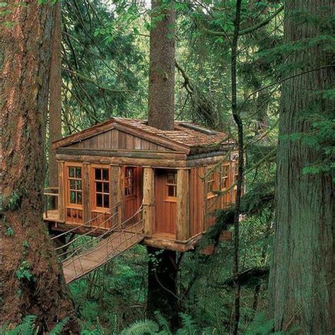 maison en bois dans les arbres une cabane dans les arbres luxe nature et chic archzine fr