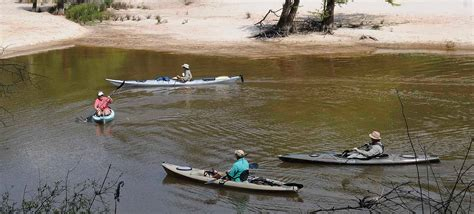 village creek state park texas parks wildlife department