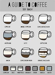 Different Types of Coffee Guide