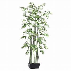 bac plante interieur good il suagit duun arbre fruitier With delightful maison en tronc d arbre 4 arbre dinterieur maison et fleurs