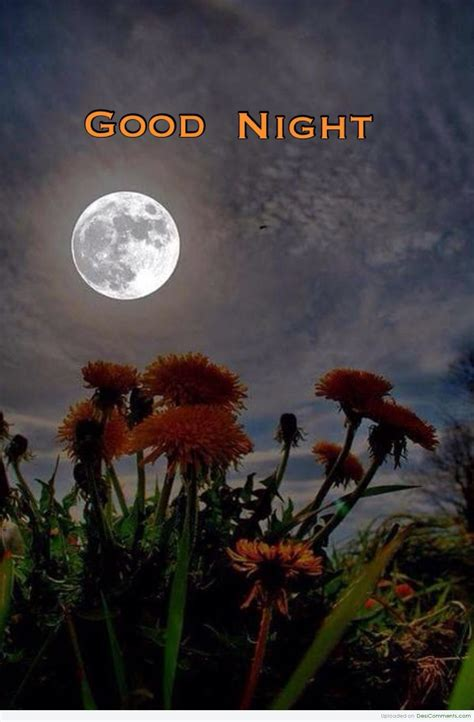 good night pictures images graphics page