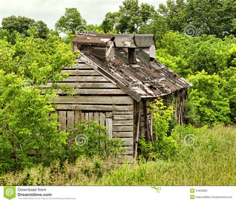 shack  woods stock photo image  rural condemned