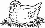 Chicken Coloring Pages Stencil Hen Hatching Eggs Super Printable Cartoon Cow Adult Supercoloring Print Farm sketch template