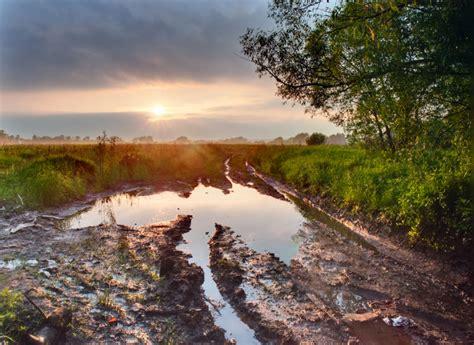 muddy road zen enlightenment koans explained practice