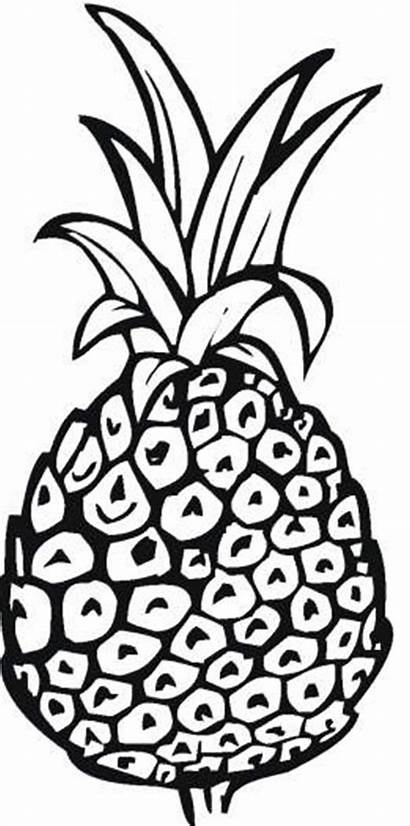 Coloring Pineapple Pages Printable Outline Drawing Spongebob