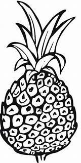 Pineapple Coloring Printable Spongebob Outline Template Getdrawings Drawing Kerra Bestcoloringpagesforkids sketch template