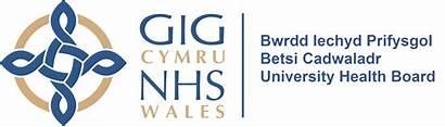 Betsi Health Cadwaladr University Board Case Wales