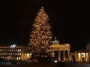Weihnachtsbaum Entsorgen Berlin : bild weihnachtsbaum vor dem brandenburger tor zu ~ Lizthompson.info Haus und Dekorationen