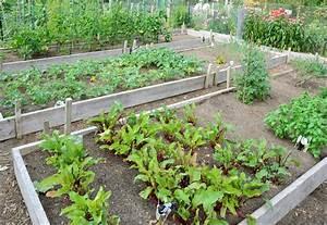 Einen gemusegarten planen und anlegen for Garten planen mit einbruchsicherung balkon