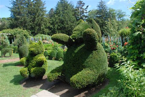 Topiary : Mookielovesbread