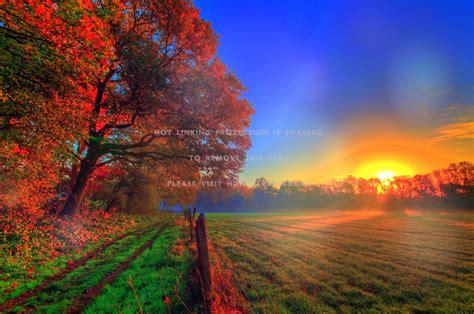 autumn sunrise beautiful landscapes fall in