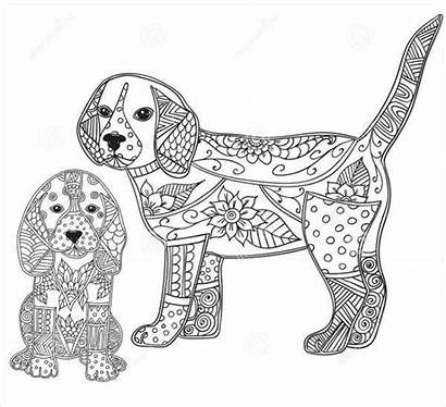 Coloring Puppy Pages Adults Template Colouring Dog