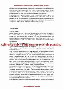 Harvard application essay examples term paper websites yale