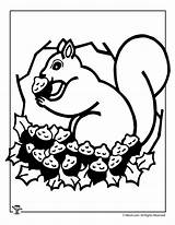 Squirrel Coloring Pages Fall Printable Thanksgiving Activity Activities Woojr Print Autumn Turkey sketch template