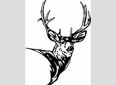 Mule Deer Head Decal 2