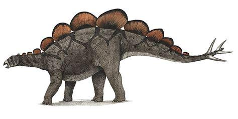 criptosito stegosauro