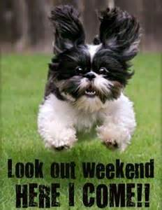 Look Out Weekend Here I Come