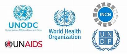 Un Agencies Drug Infographic Organization Main Decriminalization