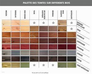 Peinture Bois Exterieur Tollens : nuancier de peinture l gant nuancier peinture volets bois ~ Dailycaller-alerts.com Idées de Décoration
