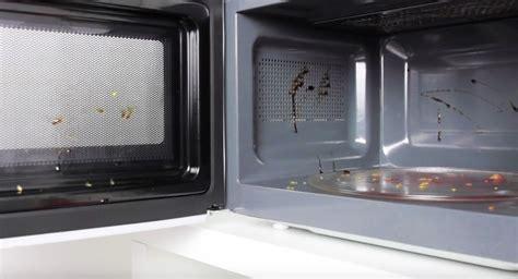 Mikrowelle Sauber Machen by Mikrowelle Im Handumdrehen Reinigen Wer Weiss Was De