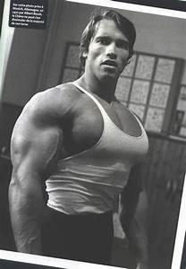526 best images about Arnold Schwarzenegger - Bodybuilder ...
