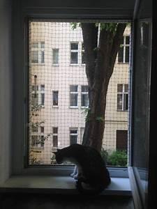 Fenstersicherung Ohne Bohren : diy fenstersicherung f r katzen ohne bohren home garden pinterest katzen ~ Eleganceandgraceweddings.com Haus und Dekorationen