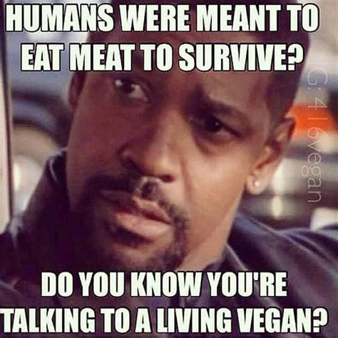 Funny Vegan Memes - 14 best images about vegan memes on pinterest