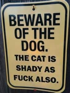 cat signs irti picture 1435 tags cat sign beware shady