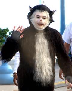 the cat in the hat mike myers mike myers skunk topical island