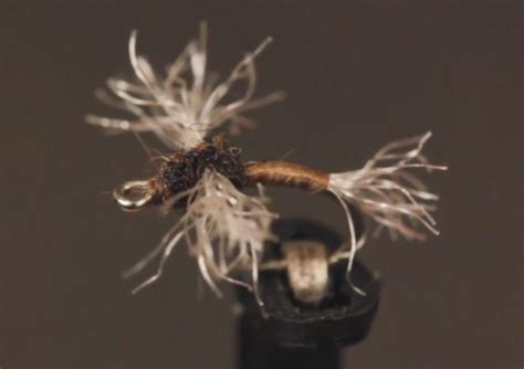Fly Tying Midge Patterns