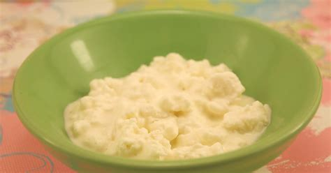 make your own cottage cheese the alchemist how to make cottage cheese