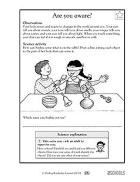 our 5 favorite prek math worksheets activities science