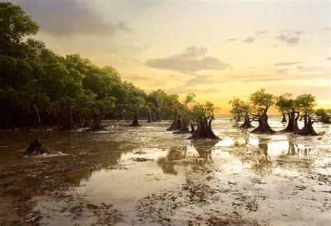 tempat wisata  sumba  bikin lupa bali  lombok
