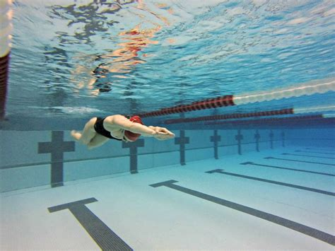 competitive swimming  arkansas   arkansas