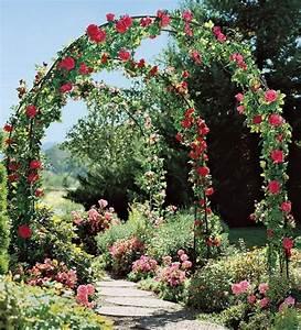 Rosen Für Rosenbogen : coole gartengestaltung mit rosenbogen blickpunkt im garten blick in die natur rosenbogen ~ Orissabook.com Haus und Dekorationen