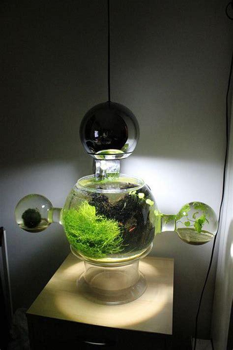 20 Most Creative Aquariums With Tiny Ideas   Home Design