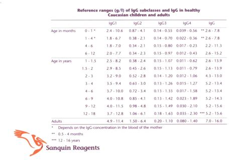 comparateur de bureau de change immunoglobulin levels normal range 28 images serum
