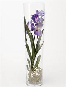 Orchideen Im Glas : vanda blau 70 cm orchideen kunstpflanze im glas ~ A.2002-acura-tl-radio.info Haus und Dekorationen