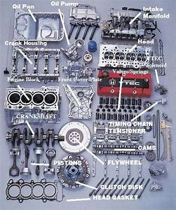 Honda Engine  Can U0026 39 T Figure Out Which One Though  Looks