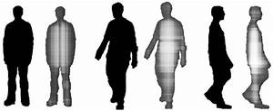 Examples Of Rectangles Size Distributions For Human Shaped Silhouettes