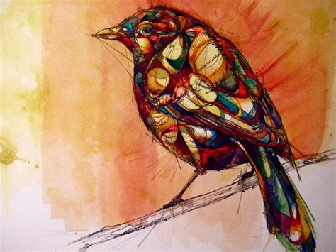 rook bird   branch feathers nature animal abstract art