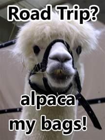 Alpaca My Bags Joke