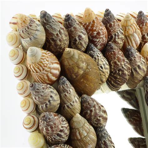japanese snail sea shell mirror hacienda