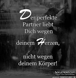 Der Perfekte Partner : der perfekte partner ~ A.2002-acura-tl-radio.info Haus und Dekorationen