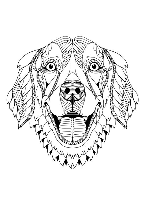 Facebook T-Shirt | Dog coloring page, Golden retriever art, Doodle coloring