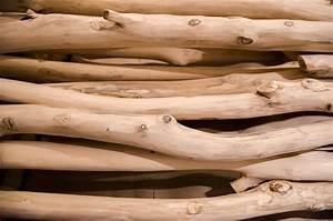 Tronc Bois Flotté : images gratuites bois flott arbre branche tronc rustique rural b che produire bois d ~ Dallasstarsshop.com Idées de Décoration