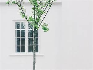 Kosten Hauswand Verputzen : verputzen kosten verputzen preise putzarbeiten ~ Lizthompson.info Haus und Dekorationen